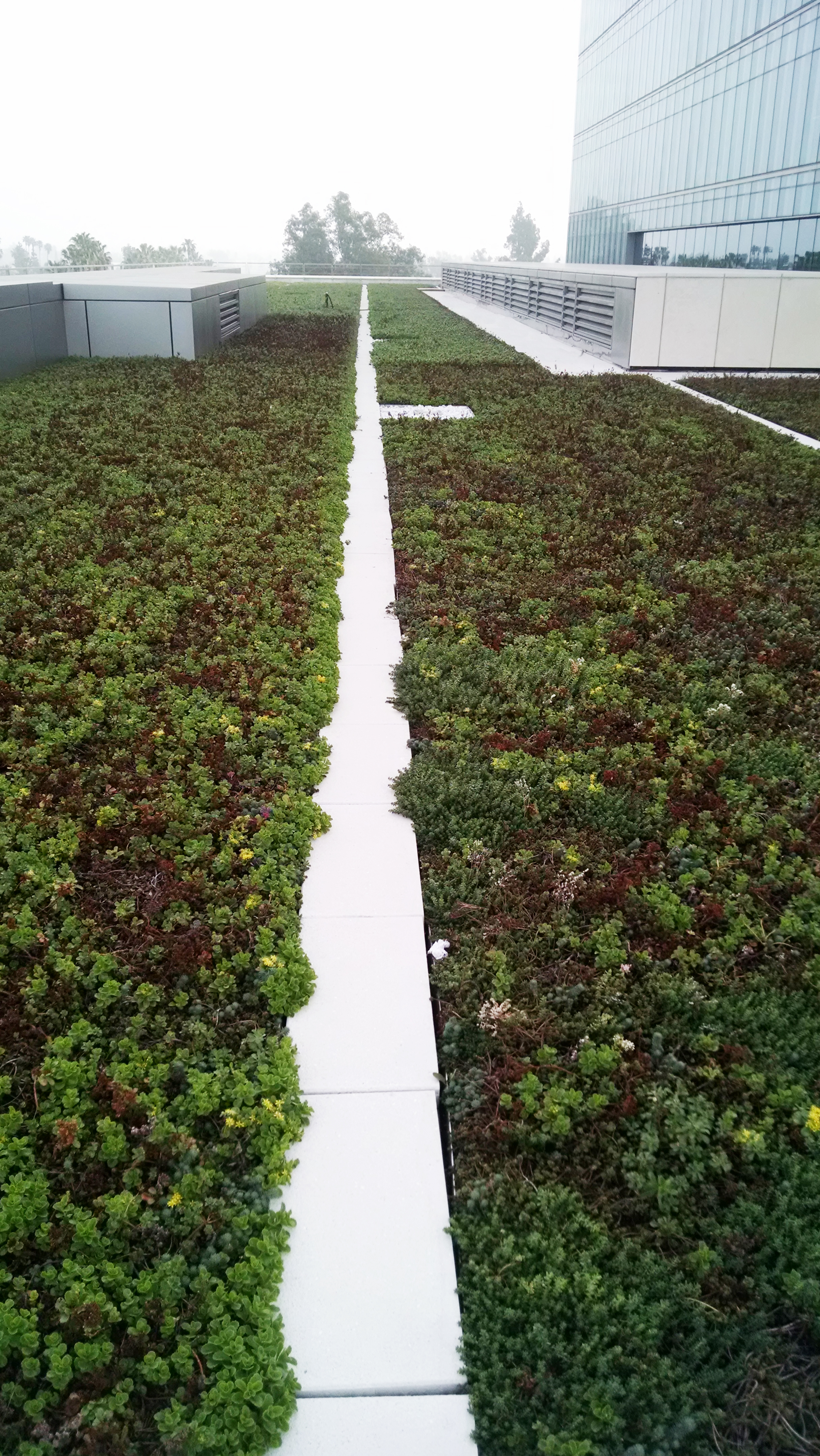 American Hydrotech, Inc. - Green Roofs, Garden Roofs, Monolithic ...