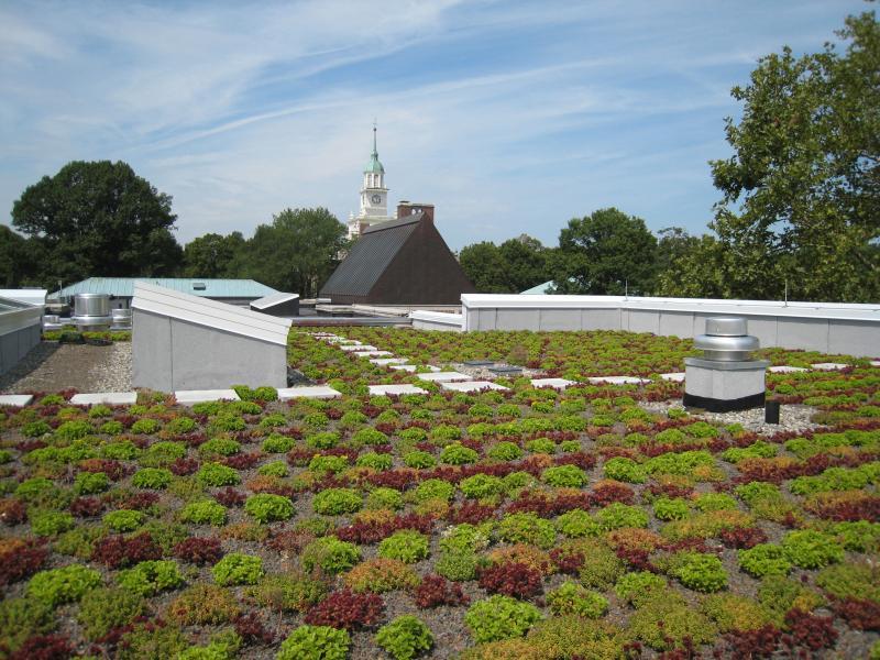 Garden Roof 174 Assembly Extensive American Hydrotech Inc