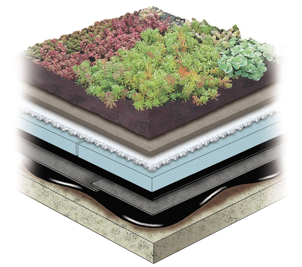 Garden Roof Rock Wool Assembly American Hydrotech Inc