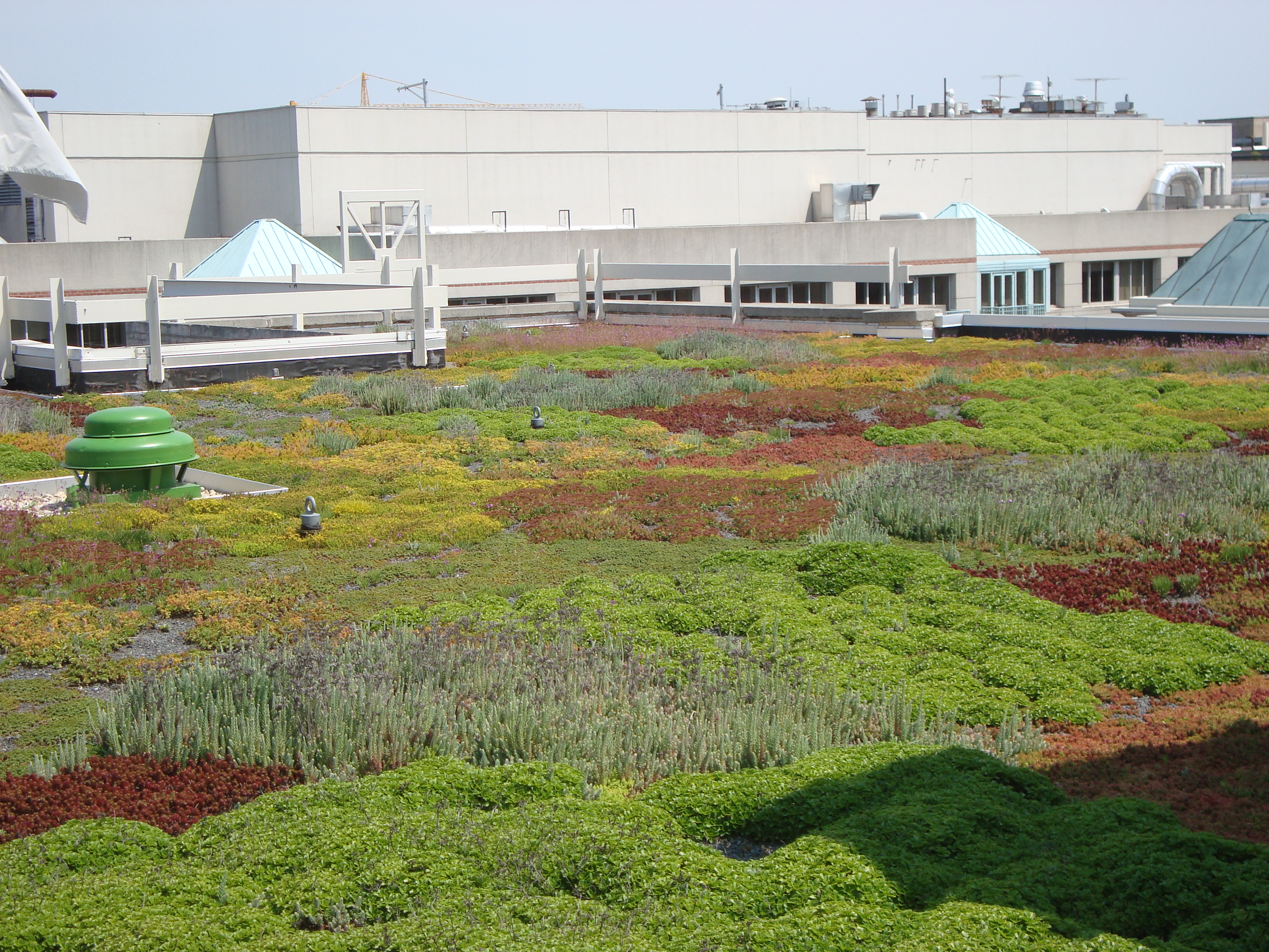 green roofs a primer american hydrotech inc. Black Bedroom Furniture Sets. Home Design Ideas