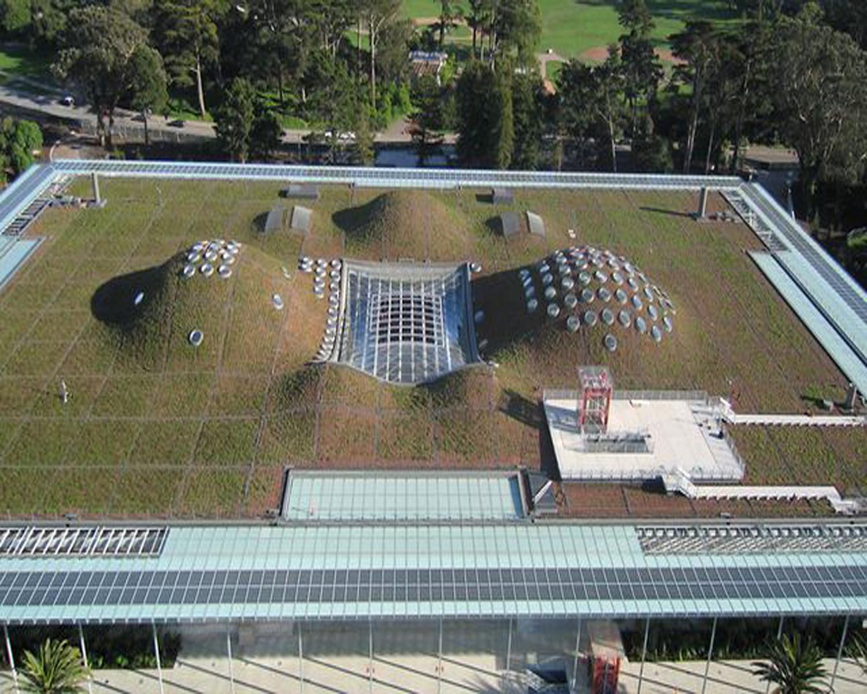 California Academy Of Sciences American Hydrotech Inc