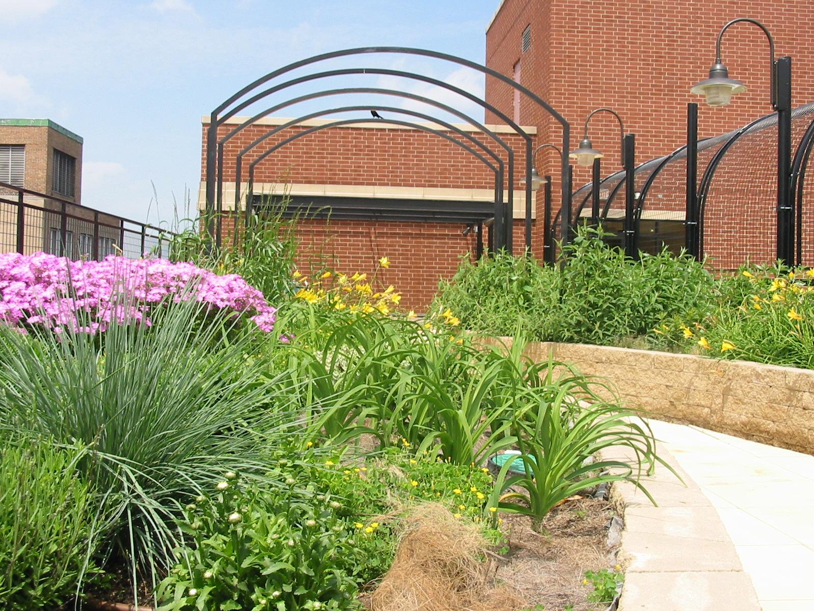 Schwab Rehabilitation Hospital American Hydrotech Inc